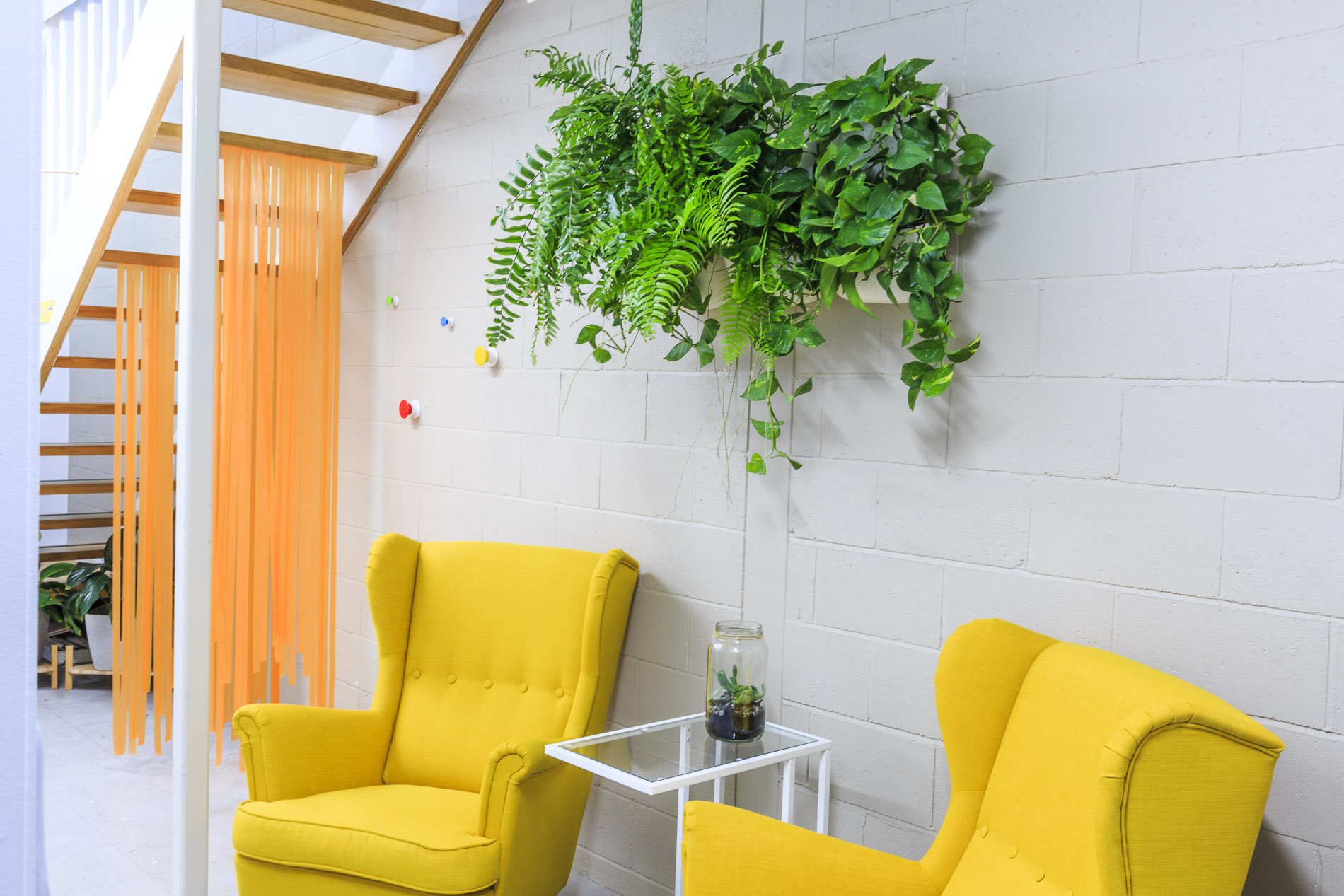 Herd Coworking Warragul yellow chairs with plants and stairs